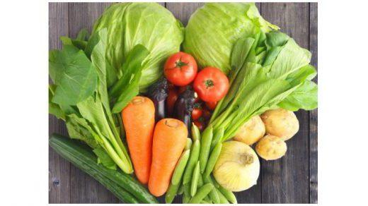 ダイエットと酵素の関係!?どんな働きをしてるの?